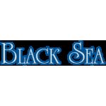 "Часы ""Амфибия"" BLACK SEA"