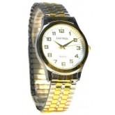 Часы Zaritron GВ053-2-с